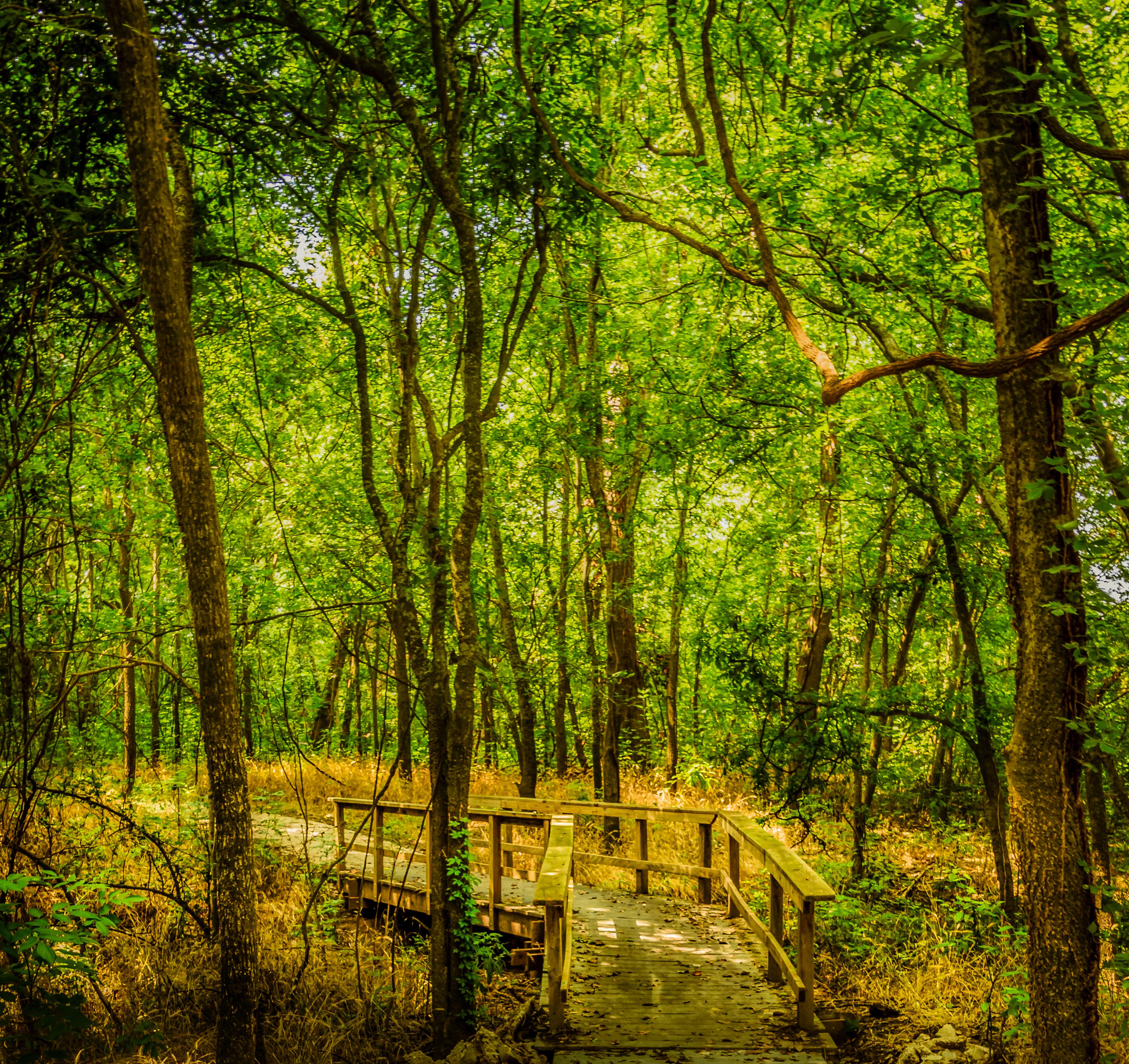 texas hiking